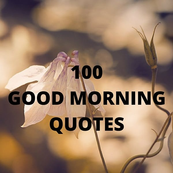 115 Good Morning Quotes Sayings With Charming Images