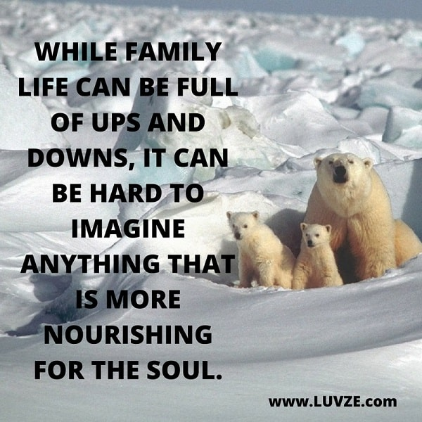 family quotes and sayings beautiful images