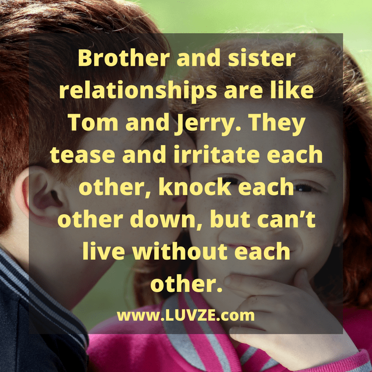 Quotes In Brother: 135 Cute Brother Sister Quotes, Sayings And Messages