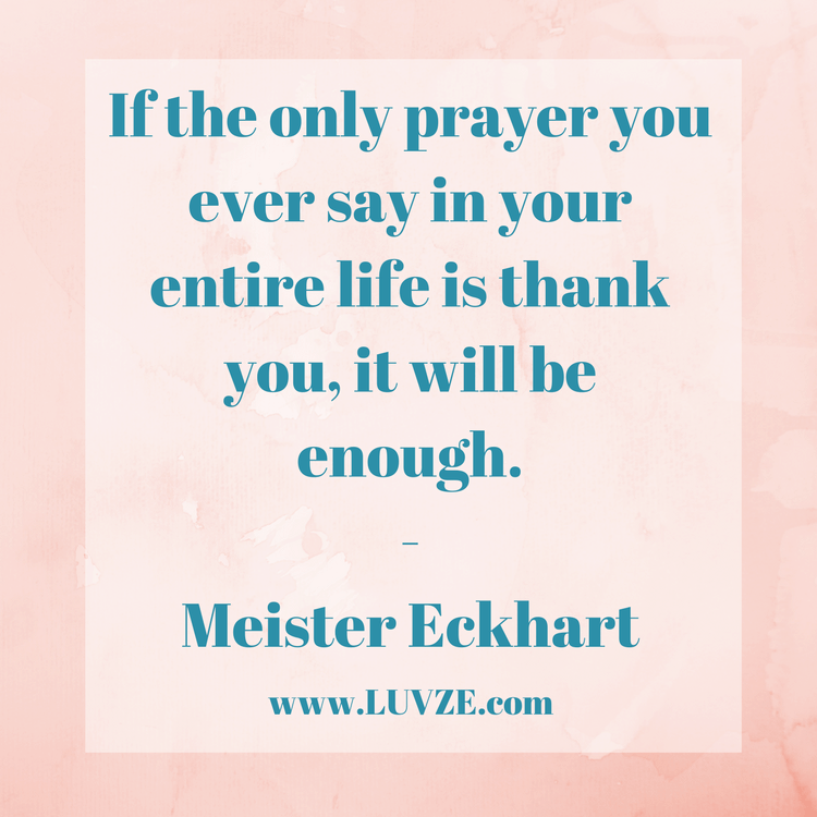 Elegant Thankful Quotes And Appreciation Sayings