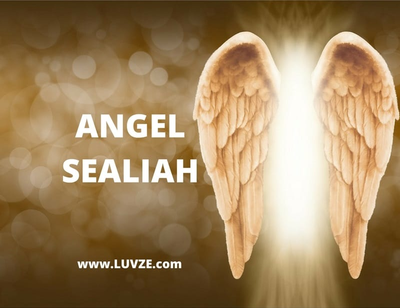 angel sealiah