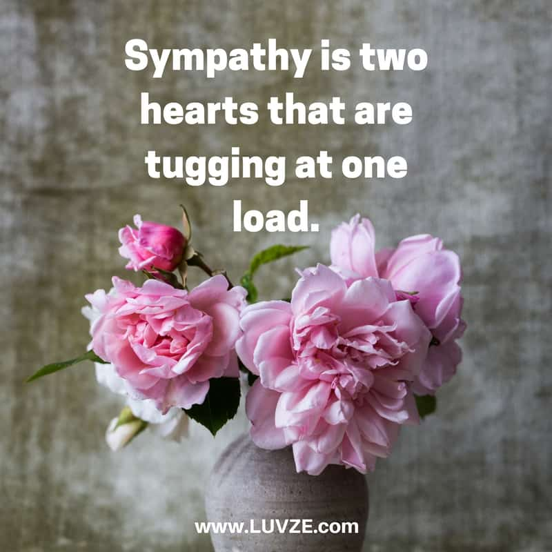 Sympathy Quotes And Messages 127 Condolences Quotes