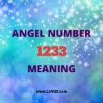 Angel number 1233 meaning