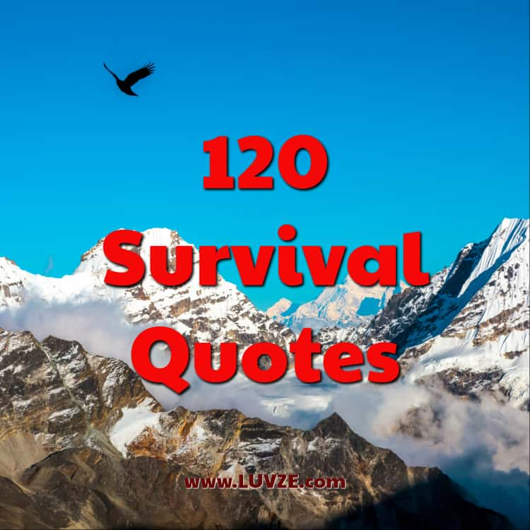 60 Survival Quotes And Sayings Inspiration Survival Quotes